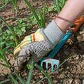 Blog weed garden