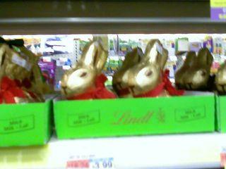Easter bunnnies
