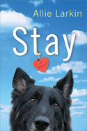 Stay-cover-small