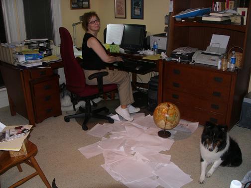 Di office