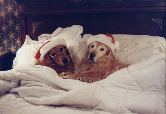 Mr and mrs santa clause (ben and chapel) - Copy