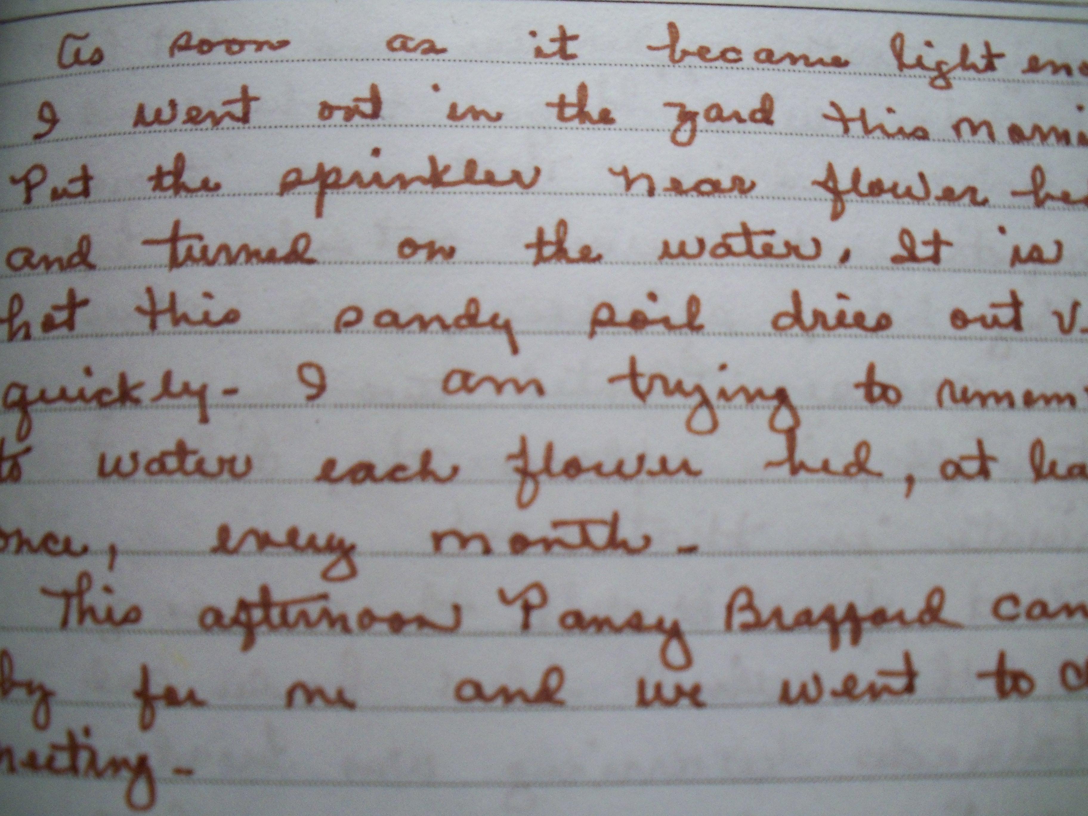 Impressive essay (I think) but poor handwriting....?