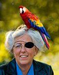 Laurie_parrot
