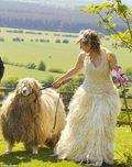 Wool-dress-21