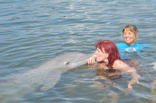 Dolphin dream date--smooch with santini