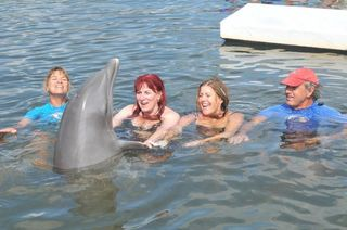 Dolphin dream date--Jane, me, Kathy, Mandy and Santini