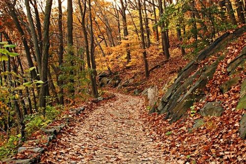 Inwood_park_trail1