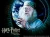 Blog_dumbledore2
