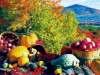 Thanksgiving_2jpg_800600_pixels